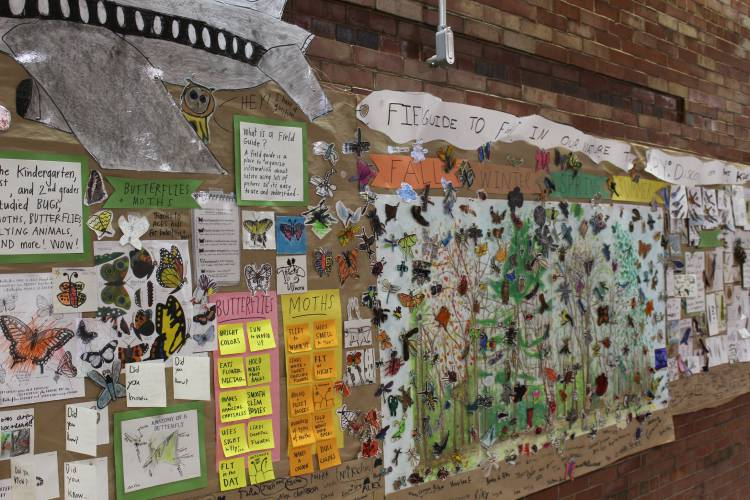 Butterfly Wall by Four Corners Student picture by Recorder Staff